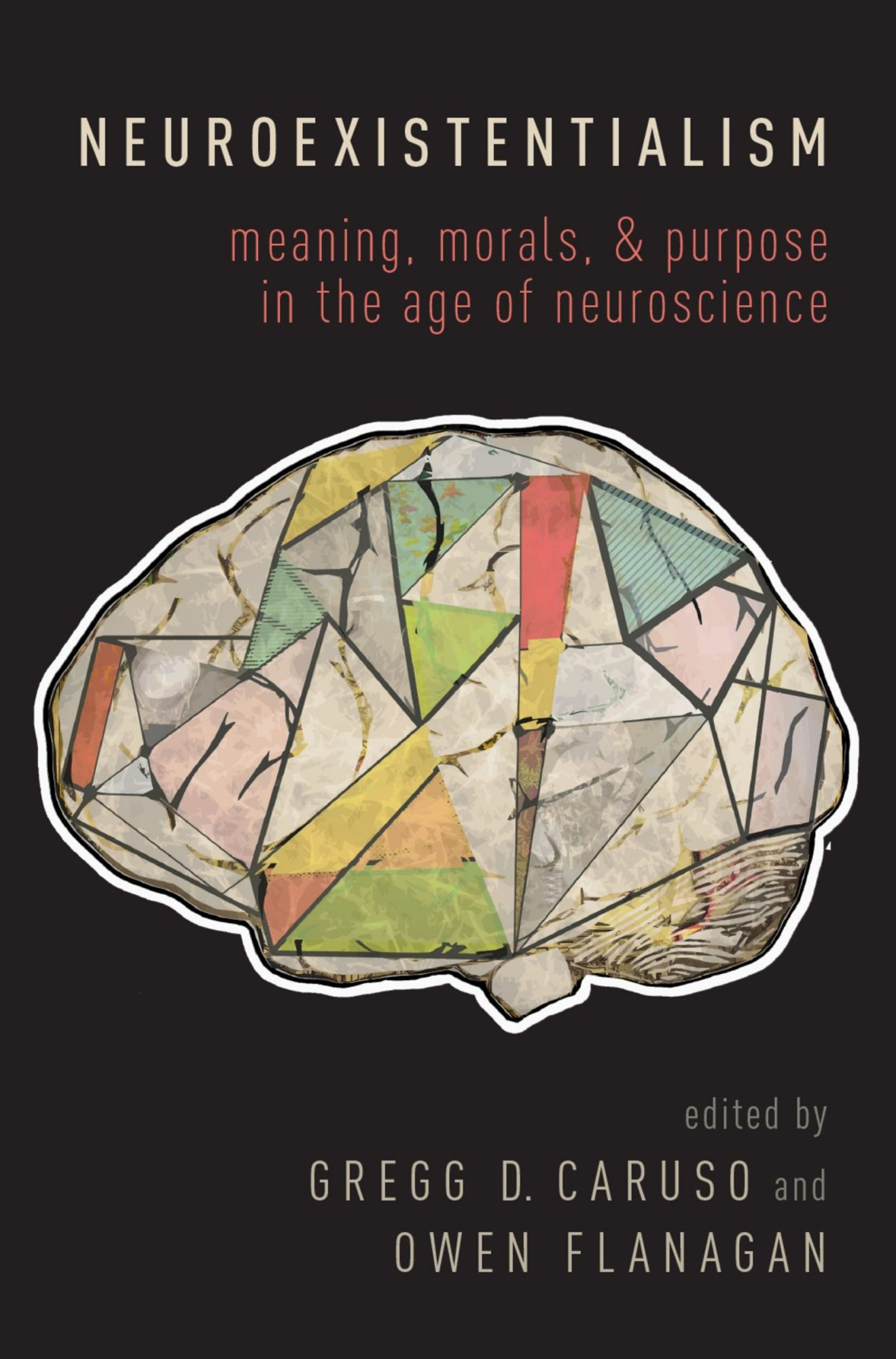 """Cover of the book """"Neuroexistentialism: Meaning, Morals, and Purpose in the Age of Neuroscience"""""""